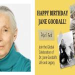 dr_jane_goodall_1