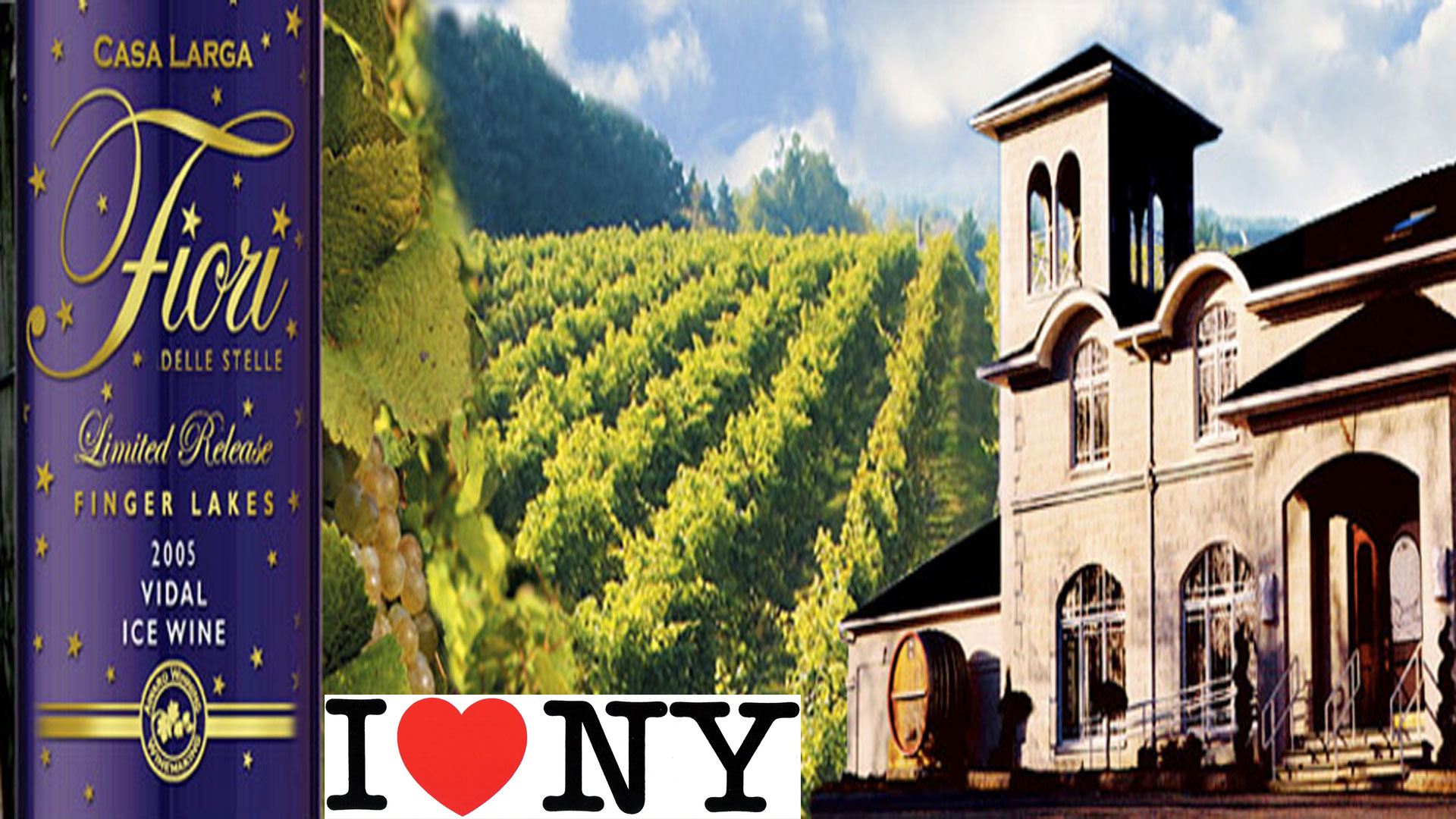 casa_larga_vineyards_winery_1