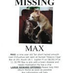 Missing - Max