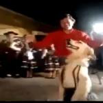 dance-with-dog