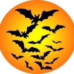 halloween-bat-moon