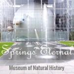 springseternal