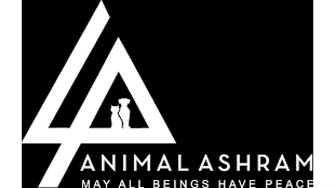 Animal Ashram Benefit for Pets