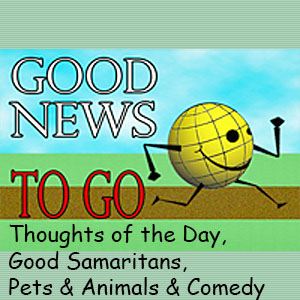 Good News To Go: Thoughts, Goodness, Pets, Comedy